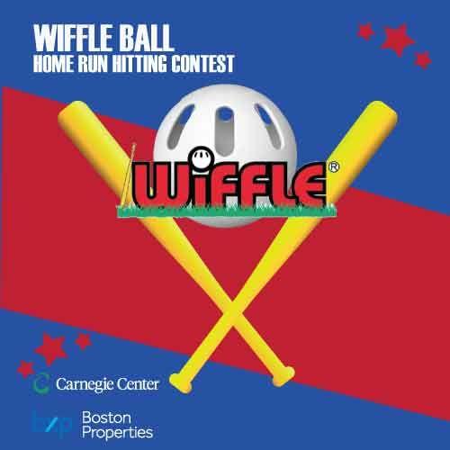 Wiffleball-500-x-500-for-web-static.jpg
